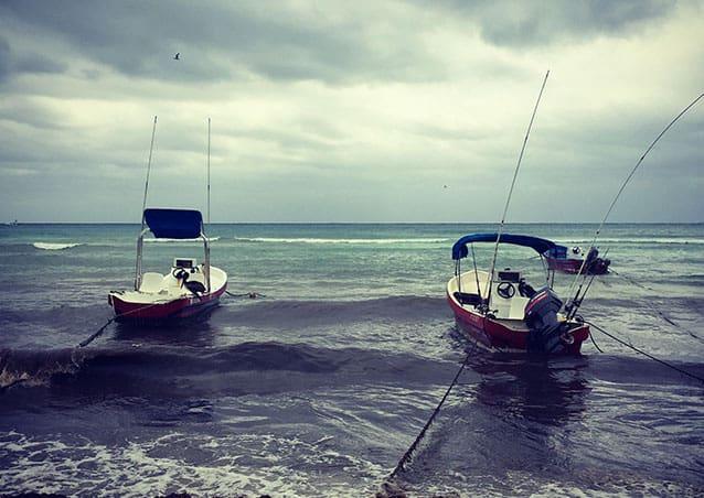 playa del carmen seo